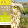 Juha Laaksonen - Tarkka haukka ja muita lintuja
