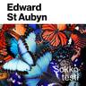 Edward St Aubyn - Sokkotesti
