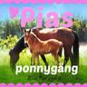 Eva Berggren - Pias ponnygäng