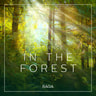 Rasmus Broe - Ambience - In the Forest