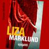 Liza Marklund - Ajojahti