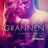 Grannen - 10 erotiska noveller i samabete med Erika Lust - äänikirja