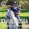Katja Ståhl - Kavioliitossa – Hevoshullun kirja