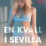 En kväll i Sevilla - erotiska noveller - äänikirja