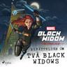 Black Widow - Begynnelsen - Berättelsen om två Black Widows - äänikirja