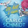 Carlo Schmidt - Ett hål i isen