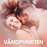 Kustantajan työryhmä - Vändpunkten - erotiska noveller