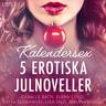 Malin Edholm, Lisa Vild, Katja Slonawski, Elena Lund, Camille Bech - Kalendersex - 5 erotiska julnoveller