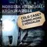 Cold case? Dubbelmord i Högdalen - äänikirja