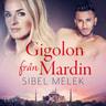 Sibel Melek - Gigolon från Mardin - erotisk novell