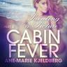 Cabin Fever 4: Painting a Picture - äänikirja