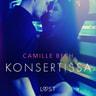 Konsertissa - eroottinen novelli - äänikirja