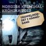 Trippelmordet i Härnösand - äänikirja