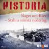 Kustantajan työryhmä - Slaget om Kiev – Stalins största nederlag