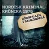 Dödsfallen i Saukonperä - äänikirja