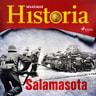 Kustantajan työryhmä - Salamasota