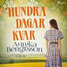 Annika Bengtsson - Hundra dagar kvar