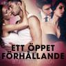 B. J. Hermansson - Ett öppet förhållande - erotisk novell