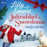 Jultrubbel i Snowdonia: tredje advent - äänikirja