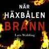 Lars Widding - När häxbålen brann