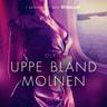 – Olrik - Uppe bland molnen - erotisk novell