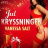 Vanessa Salt - Julkryssningen - erotisk julnovell