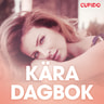 Kära dagbok - erotiska noveller - äänikirja