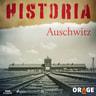 Auschwitz - äänikirja