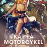 Kustantajan työryhmä - Kåt på motorcykel