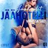 Vanessa Salt - Jäähotelli 1: Jäähuulet - eroottinen novelli