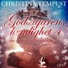 Godsägarens hemlighet 4 – en erotisk julberättelse - äänikirja
