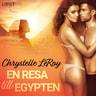 En resa till Egypten - erotisk novell - äänikirja