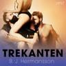 B. J. Hermansson - Trekanten - erotisk novell