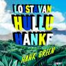 Hank Green - Loistavan hullu hanke