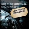 Likfyndet i Magleskov - äänikirja