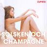 Kustantajan työryhmä - Solsken och champagne - erotiska noveller