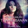 Chrystelle Leroy - Söker kärlek i tunnelbanan - erotisk novell
