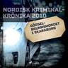 Gödselbrunnsmordet i Skaraborg - äänikirja