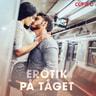 Erotik på tåget - äänikirja