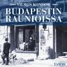 Budapestin raunioissa - äänikirja