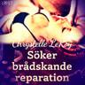 Chrystelle Leroy - Söker brådskande reparation - erotisk novell