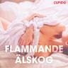 Kustantajan työryhmä - Flammande älskog - erotiska noveller
