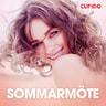 Kustantajan työryhmä - Sommarmöte - erotiska noveller